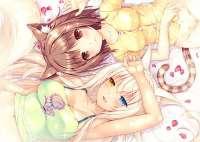 anime-nekopara-azuki-nekopara-coconut-nekopara-wallpaper-th[...].jpg