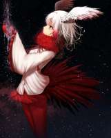 Anime-Art-Anime-Kemono-Friends-Crested-Ibis-(Kemono-Friends[...].jpeg