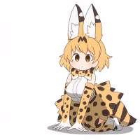 Serval-(Kemono-Friends)-Kemono-Friends-Anime-anime-gif-6336[...].gif