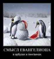 gallery153451889528.jpg