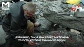 Дима нашёл динозавра.mp4