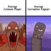 Terraria-Игры-Average-Fan-vs-Average-Enjoyer-Мемы-6583714.jpeg