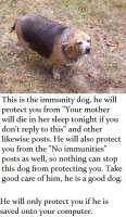 00myprotectiondog.jpg
