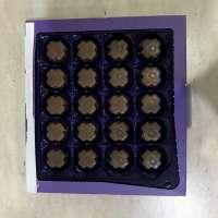 1D13EF22-25A1-49E0-BCA7-3254A6726957.jpeg