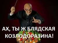СТАЛИК КОЗЛОДОРАЗИНА!.jpg