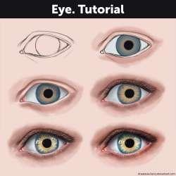 eyetutorialbyanastasiaberry-dbm285n.jpg