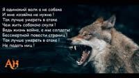 писька.mp4