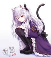 Nora.Cat.full.2305937.png