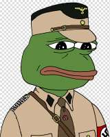pepe-the-frog-neo-nazism-nazi-party-pol-others.jpg