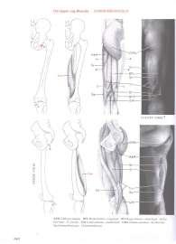 p0157.jpg