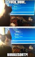 Cat-knows-better.jpg