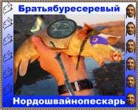 IMG20201126172632.jpg