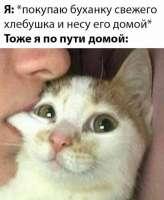 1582983525484.jpg