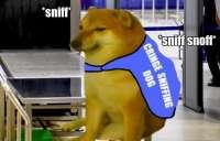 Cringe sniffing dog.jpg