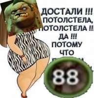 1528286398020.jpg