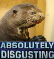 absolutely disgusting seal.jpg